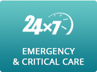 Aravali Emergency And Critical Care
